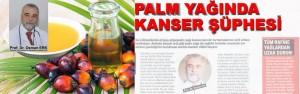 palmyaginda-kansersuphesi-kpk