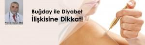 bugday-diyabet-kpk