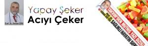 yapayseker-kpk