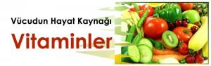 yeniasir_vucudun_hayatkaynagi_vitaminler_kpk